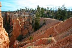 тропки каньона bryce Стоковое Изображение RF