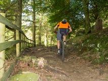 Тропки катания велосипедиста горы в Уэльсе Стоковая Фотография