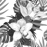 Троповая monochrome безшовная картина бесплатная иллюстрация