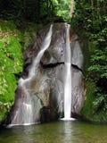 троповый водопад Стоковые Изображения