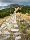 Тропы горы в Krkonose или гигантских горах Стоковое Изображение RF