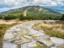 Тропы горы в Krkonose или гигантских горах Стоковые Изображения