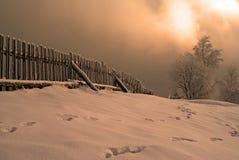 Тропы - зимнее время стоковые изображения rf