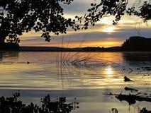 Тростники во время захода солнца над красивым озером с облачным небом в предпосылке стоковое фото
