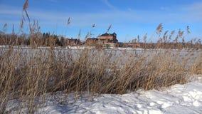 Тростники на предпосылке древней крепости Hameenlinna, Финляндия акции видеоматериалы