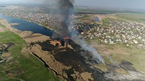 Тростники огня на реке E видеоматериал