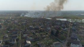 Тростники огня на реке E акции видеоматериалы