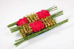 тростники цветка Стоковые Изображения RF