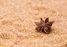 Тростниковый сахар с анисовкой звезды стоковое фото rf