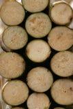 тростниковый сахар Стоковое Изображение RF