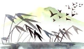 Тросточка на реке Стоковая Фотография RF