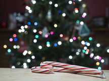 Тросточки и рождественская елка конфеты Стоковое Изображение