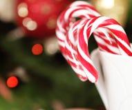Тросточки конфеты рождества рождественской елкой Стоковые Фото
