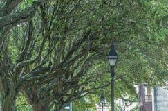 Тротуары города Стоковое Изображение RF