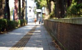 Тротуар каменной мостовой дня когда она было отлично стоковая фотография rf