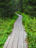 Тротуар от доск в древесине Стоковые Фотографии RF