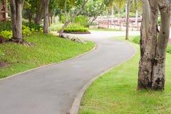 тротуар парка кривого Стоковые Фотографии RF