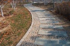 тротуар парка Стоковые Фото