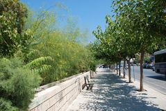 Тротуар с зелеными деревьями и улица в курортном городе ираклиона, Крита стоковые фото