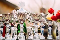 Трофеи чемпиона Чашки победителей Трофей стоковая фотография