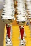 Трофеи чемпиона стоковые изображения
