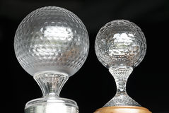 Трофей возможности гольфа Nedbank - NGC2012 Стоковое Изображение RF