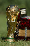 Трофей кубка мира и bayan Стоковое Фото