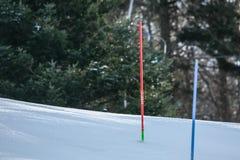 Трофей ферзя снега стоковые фотографии rf