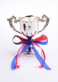 трофей чашки Стоковая Фотография RF
