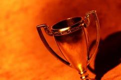 трофей чашки стоковые фото