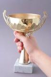 трофей чашки стоковое изображение rf