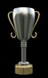трофей Стоковая Фотография