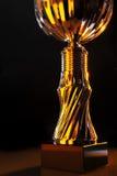 Трофей Стоковое фото RF