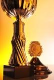 Трофей Стоковые Изображения