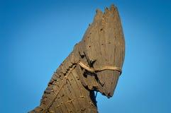 Троянская лошадь Стоковая Фотография RF