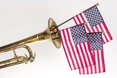 Труба американского флага Стоковая Фотография