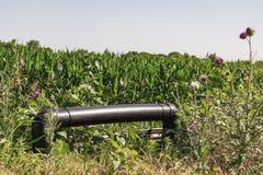 Труба в поле Стоковые Изображения