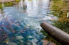 Труба лить в потоке воды стоковые фотографии rf
