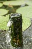 Трубка воды Стоковое Изображение RF
