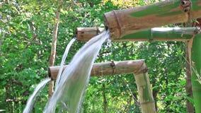 Трубка естественной воды пропуская бамбуковая сток-видео