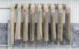 Трубка пыли Стоковые Фотографии RF