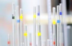 Трубки испытания в лаборатории Стоковая Фотография RF