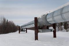 Трубопровод Аляски Стоковая Фотография