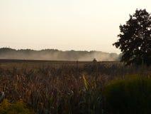 Трудная работа польского фермера в поле стоковые изображения rf