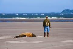 Труп и рыболов морсого льва на пляже на рте c стоковая фотография rf