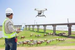 Трутень компьютерного управления пользы фермера техника отслеживая корову стоковое изображение