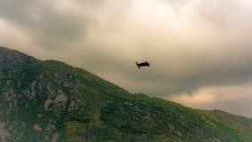 Трутень с профессиональной камерой фотографирует туманные горы на заходе солнца стоковые фото