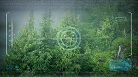 Трутень POV летая над туманным лесом видеоматериал