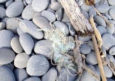 Трудный крупный план камешков Стоковая Фотография