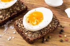 Трудный сандвич вареного яйца Стоковая Фотография RF